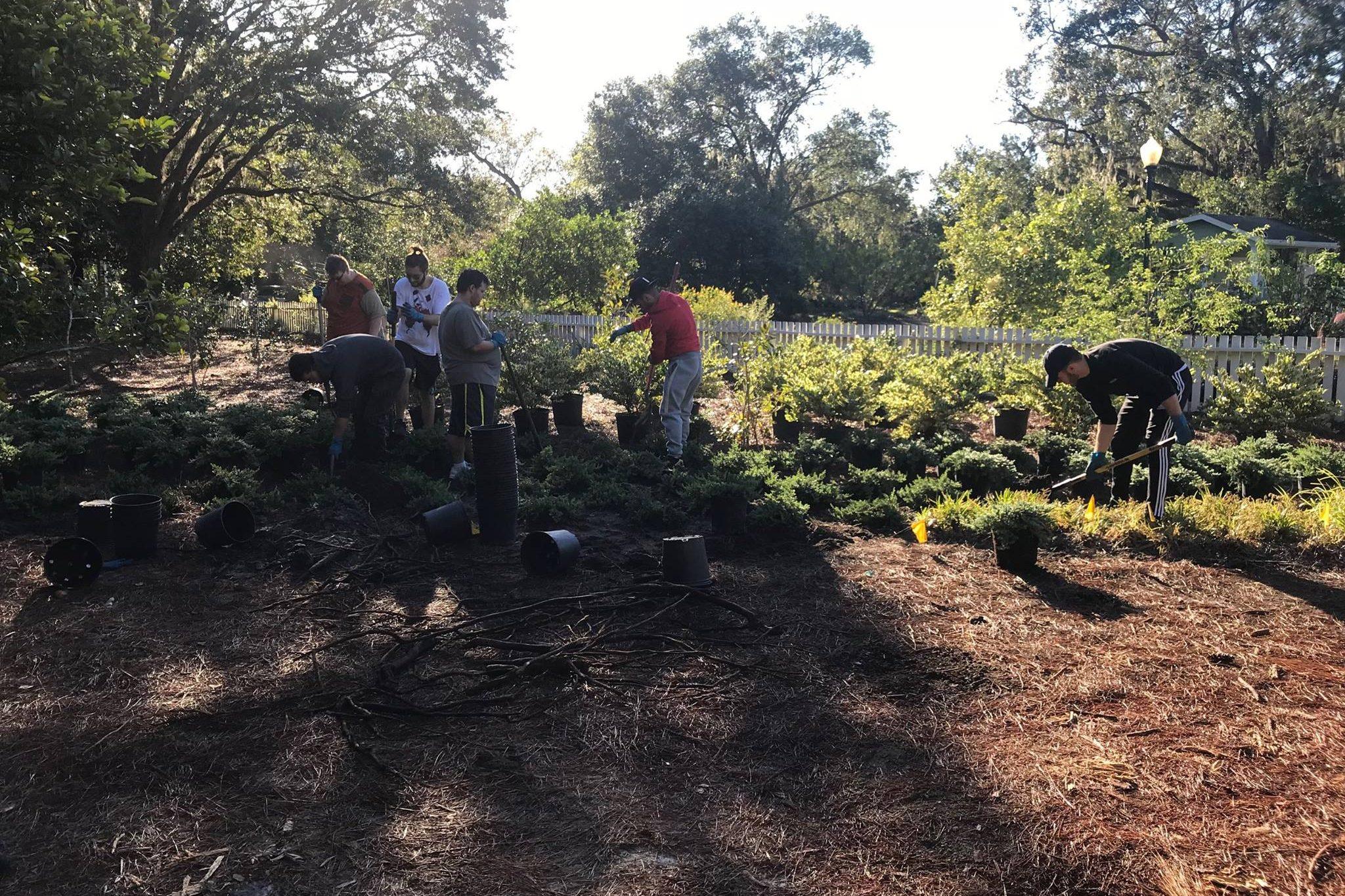 Leu Gardens Work